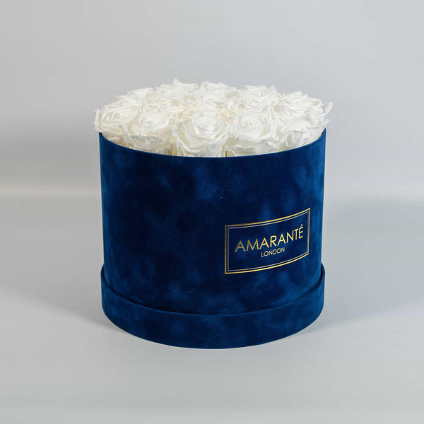 White roses that last forever in blue suede round box