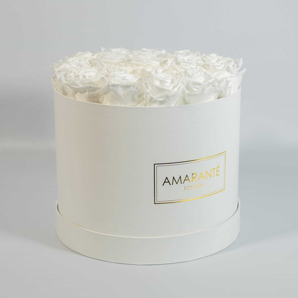 White roses that last forever in white round box