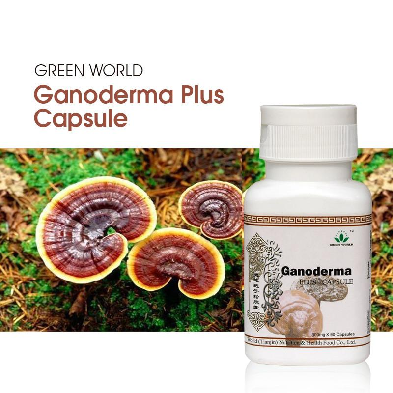Ganoderma Plus Capsule - Green World Products Shop