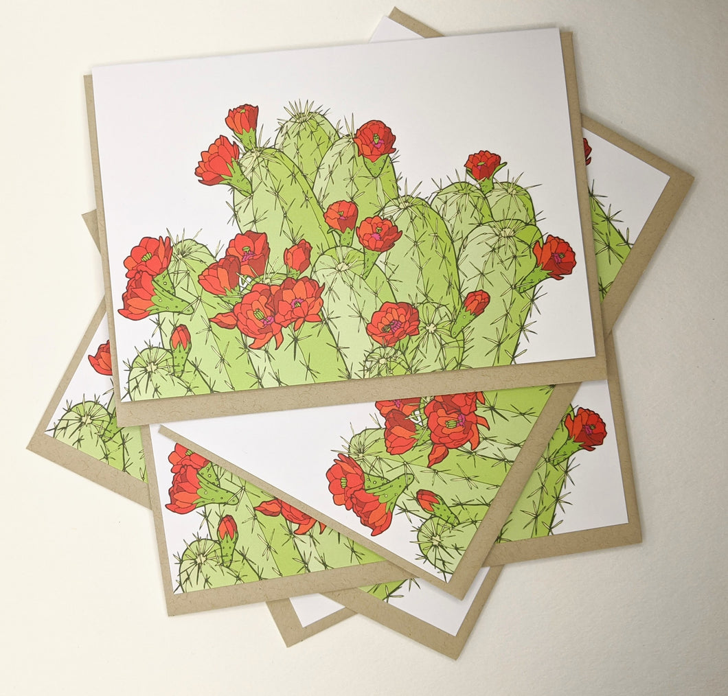 Hedgehog Cactus Greeting Cards