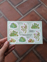 Load image into Gallery viewer, Cactus Sticker Sheet