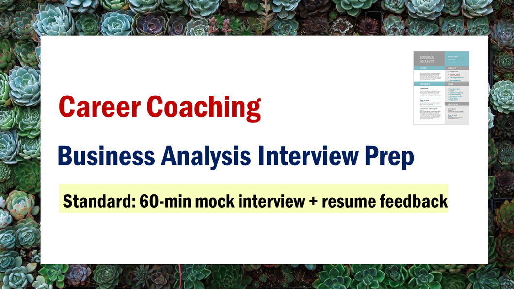 Business Analysis Interview Prep (Standard)