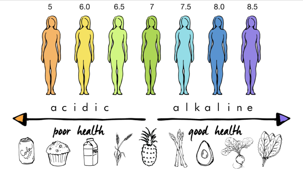 scale of pH balancing relating to food types