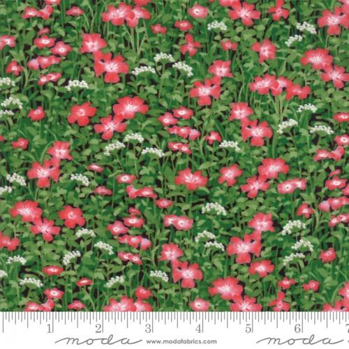 Moda Wildflowers IX 33383-16 - Cotton Fabric