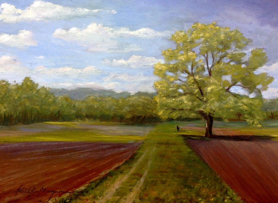 This original plein air oil painting was painted onsite in South Glastonbury, CT. It is painted on archival quality canvas covered panel with professional oil pigments.  The painting itself measures 9X12
