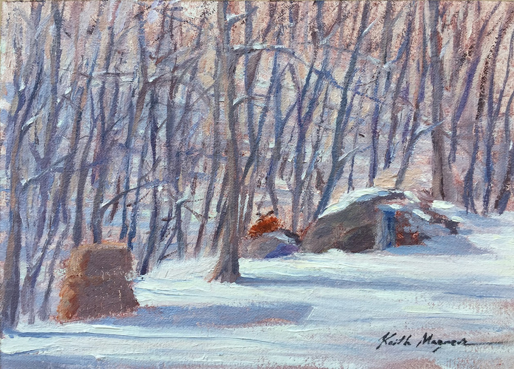 This original plein air oil painting was painted onsite in Fairfield, CT.  Keith noticed this fox resting on a bolder in the sun outside his studio window and was able to capture the scene.  It is painted on archival quality canvas covered panel with professional oil pigments.  The painting itself measures 5X7