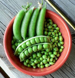 Pease and peapods in a bowl