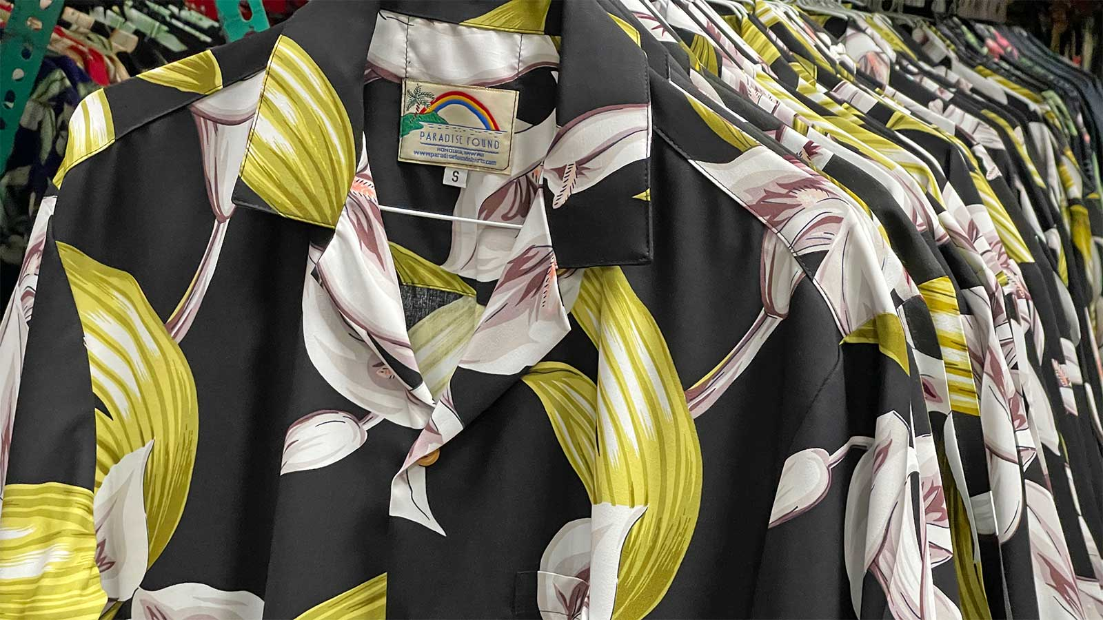 row of Calla Lily shirts at Paradise Found office