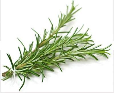 Angel's Mist Rosemary Essential Oil
