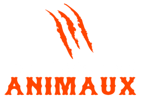 Tableaux Animaux
