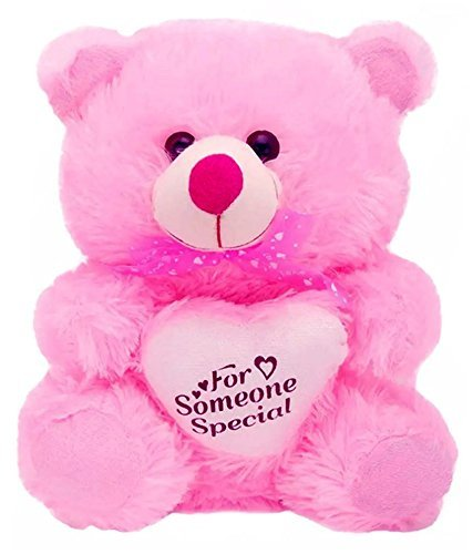 Teddy For Someone Special ( Pink )