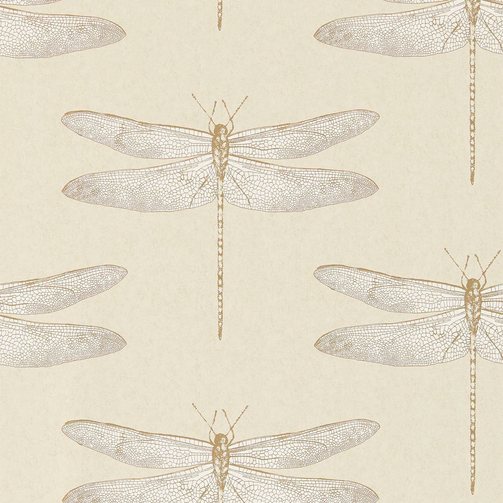 Demoiselle Wallpaper - Shell