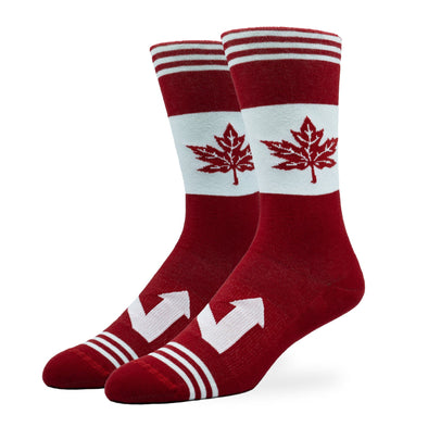 MEN'S SILVER CREW SOCKS | THE NORTH
