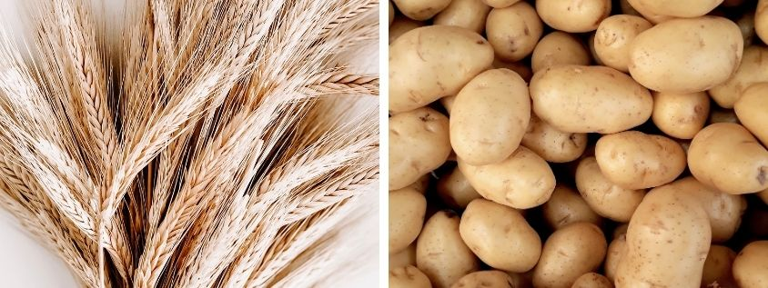 HEALTH BENEFITS OF POTATOES AND CEREALS