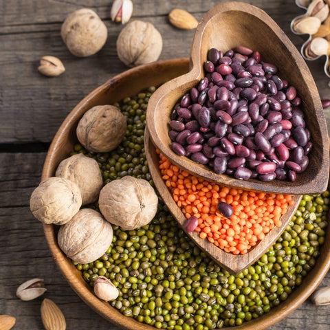 plant-based protein foods