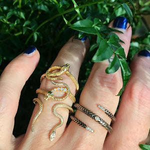serpent rings on hand