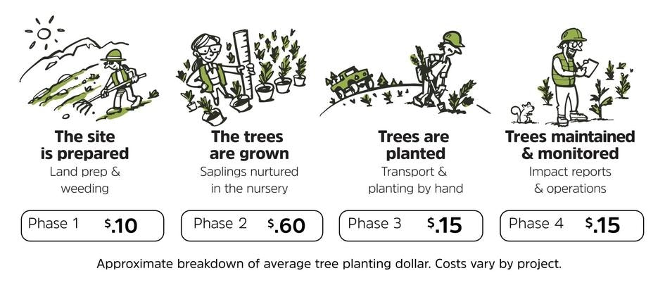 One Tree Planted - how it works - donation breakdown