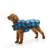 Brown Dog wearing Soft Snuggly Plaid Dog Jacket