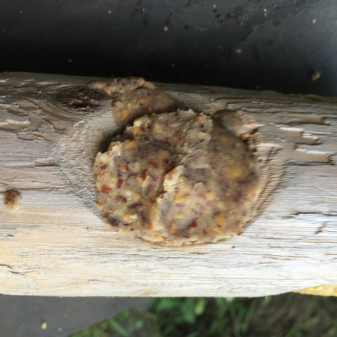 Suet plug Packed into Log