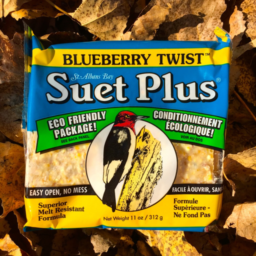 Suet Plus Blueberry Twist Suet Cake by Wildlife Sciences