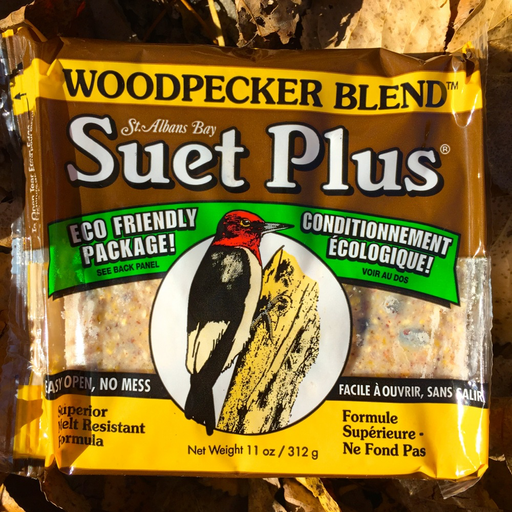 Suet Plus Woodpecker Blend 11oz Suet Cake