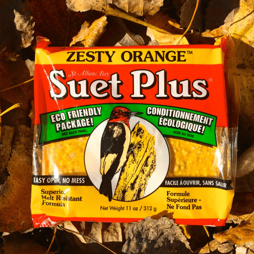 Suet Plus Zesty Orange Suet Cake by Wildlife Sciences