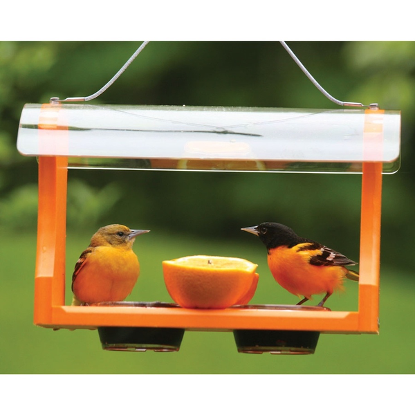 Bird's Choice Recycled Oriole Feeder
