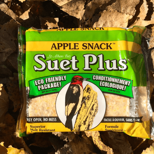 Suet Plus Apple Snack Suet Cake by Wildlife Sciences