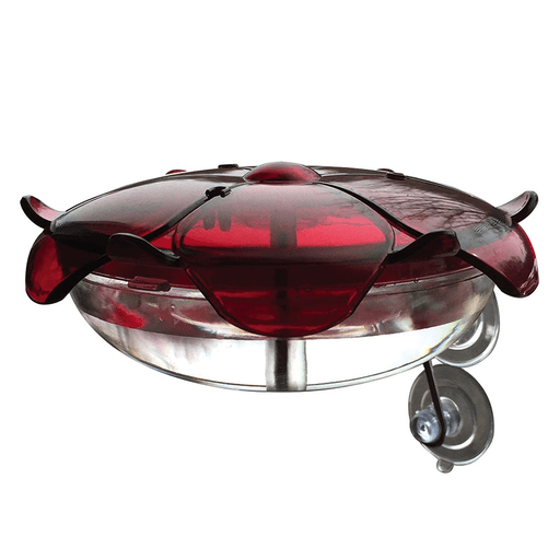 Ruby Sipper Window Mount - Clear