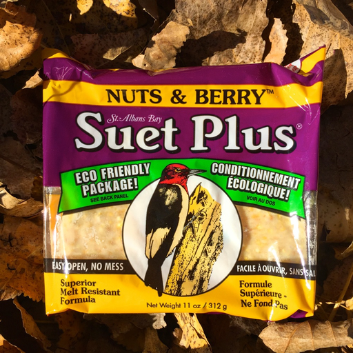 Suet Plus Nuts & Berry Suet Cake by Wildlife Sciences