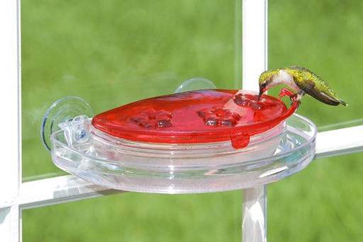 Aspects Jewel Box Window Hummingbird Feeder