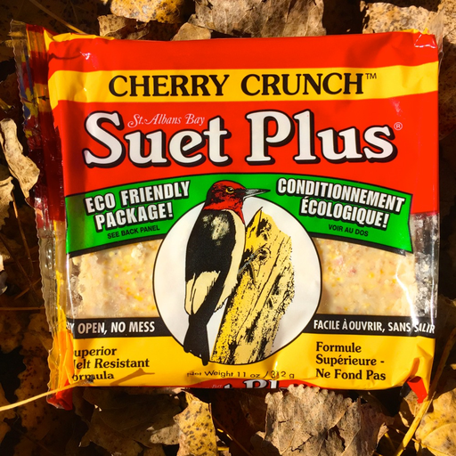 Suet Plus Cherry Crunch Suet Cake by Wildlife Sciences