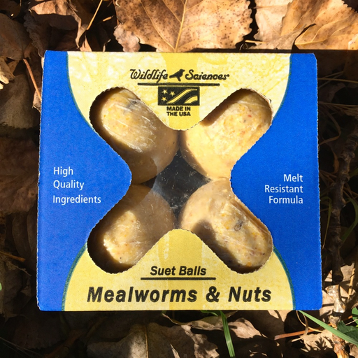 Wildlife Sciences Mealworms & Nuts Suet Ball 4-pack