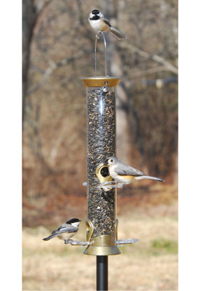 "Droll Yankees Precious Metals 15"" Sunflower Tube Feeder (Heirloom Gold)"