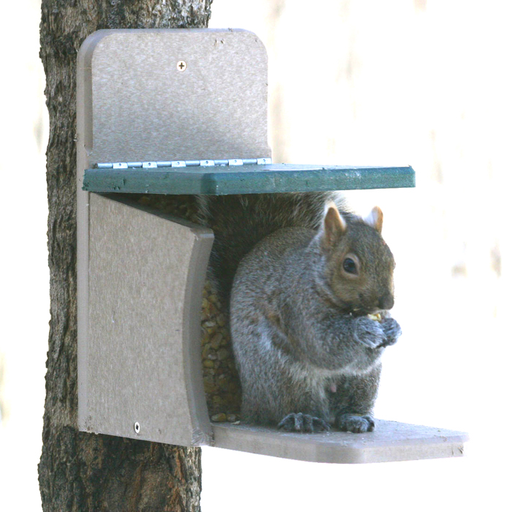 Bird's Choice Munch Box Recycled Squirrel Feeder