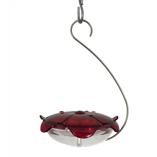 Droll Yankees Hanging Ruby Sipper - Clear