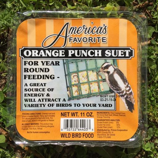 America's Favorite 11oz Orange Punch Suet Cake