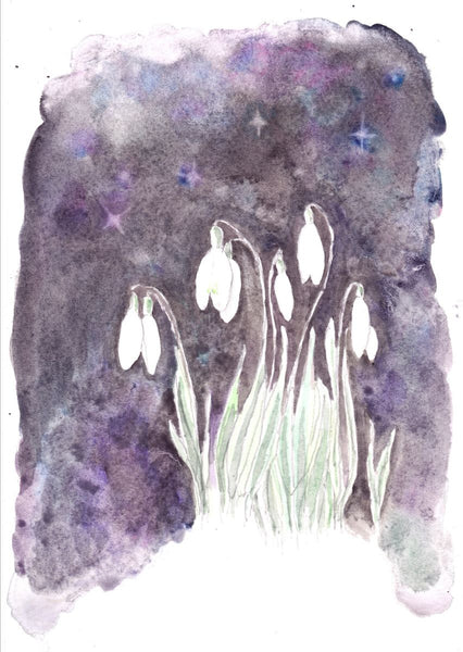 Imbolc is here with first signs of Spring! It is Aquarius time of year!