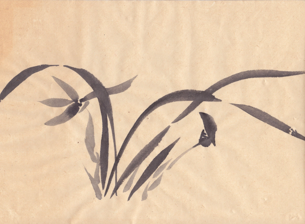 Japanese Spring Orchid Sumie Brush Painting - Greeting Card
