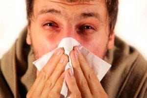 Allergies – The Sneezing Sickness
