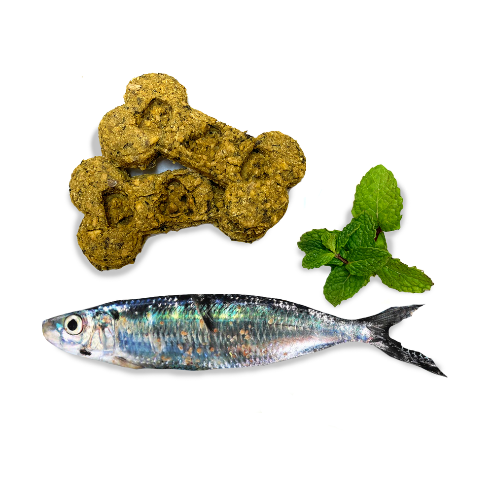 Organic Dog Treats - Wild Caught Sardine and Mint Wagmasters