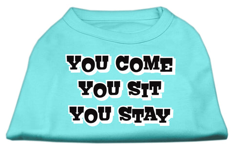 You Come You Sit You Stay Dog Shirt