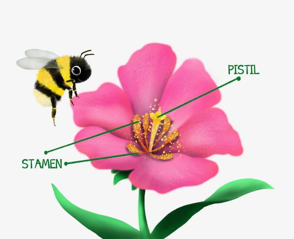 What the World Needs Now: Bees! by Cheryl Rosebush