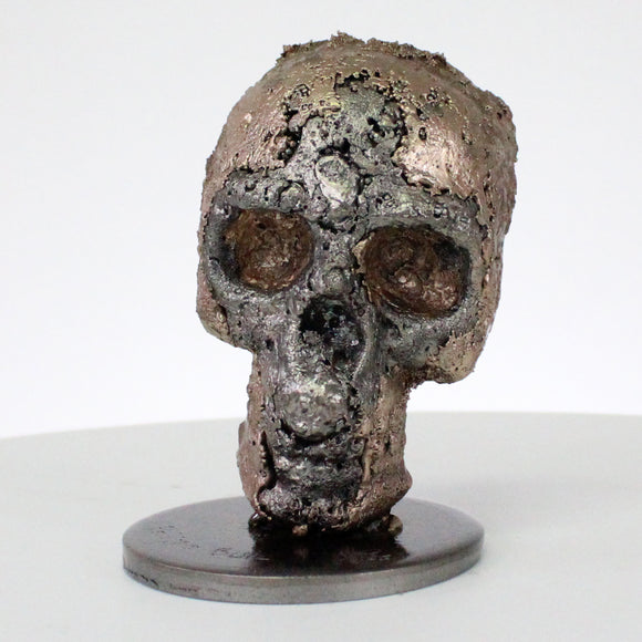 Vanité 61-21 - Sculpture crane metal - Tete de mort Acier Bronze - Skull artwork steel bronze sculpture - Buil
