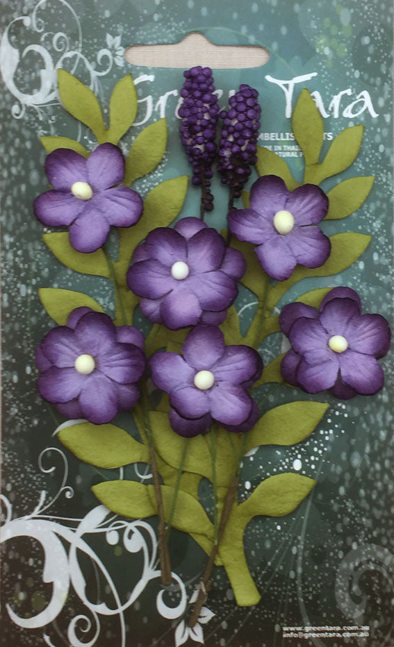 Green Tara Primrose Collection Purple