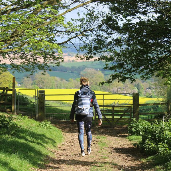 Cotswolds - Walking in the UK