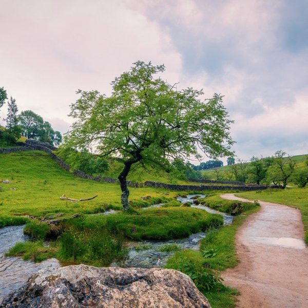 Yorkshire Dales - Walking in the UK
