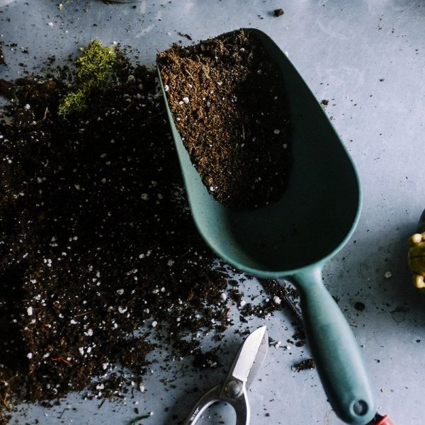 Gardening to save the planet