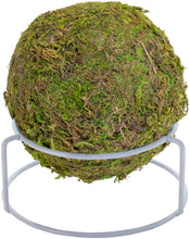 Load image into Gallery viewer, Moss (3 lb)