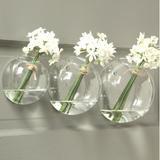 Wall Glass Bubble Vase